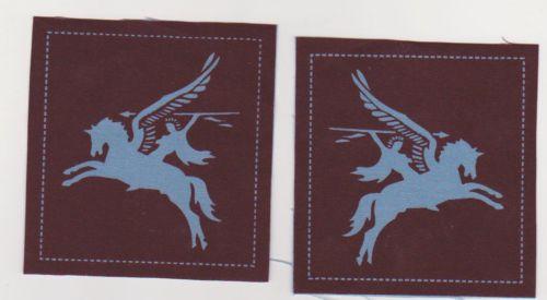 British Army Airborne Pegasus patches a pair