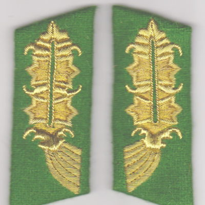 WW2 GERMAN ARMY POLICE GENERAL COLLAR TABS